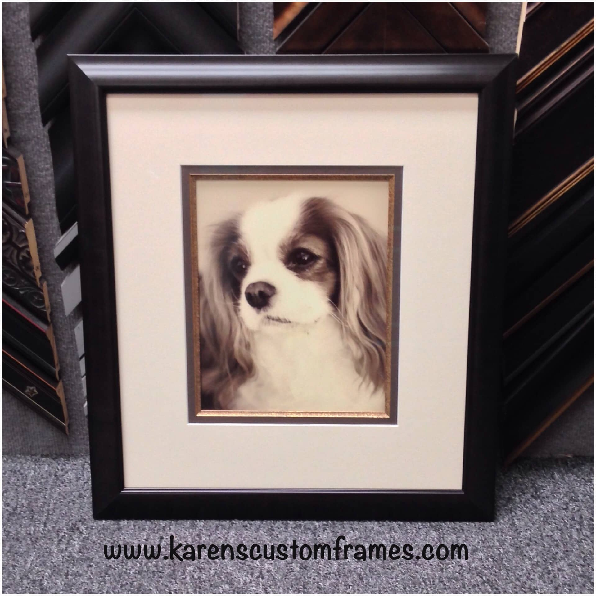 dog photography custom design and framing by karens detail custom frames