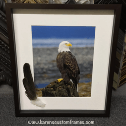 Bald Eagle | Custom Picture Framing | Custom Design and Framing by Karen's Detail Custom Frames